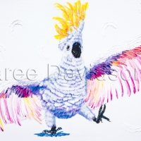THE-DANCING-COCKATOO