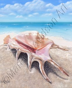 SEALIFE COLLECTION - BEACHCOMBER Maree Davidson Art