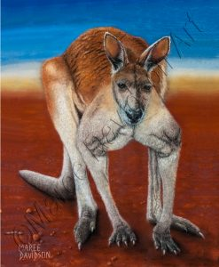 BIG RED - KANGAROO PAINTING Maree Davidson Art