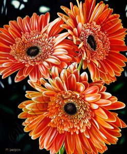 FLOWER COLLECTION - PASSION OF FIRE Maree Davidson Art