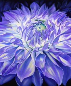 FLOWER COLLECTION - SERENITY Maree Davidson Art