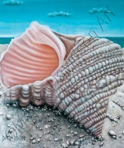 SEALIFE COLLECTION - GETAWAY Maree Davidson Art