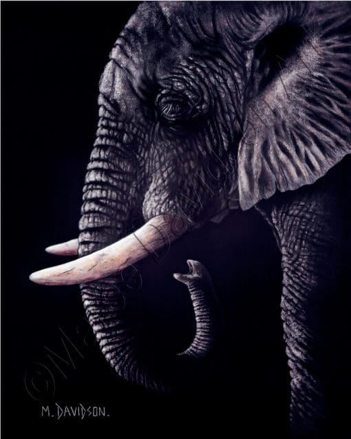 ELEPHANT PAINTING - AFRICAN DREAMS Maree Davidson Art