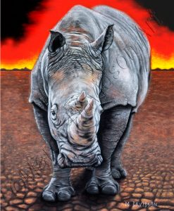 SUNSET RHINO Maree Davidson Art