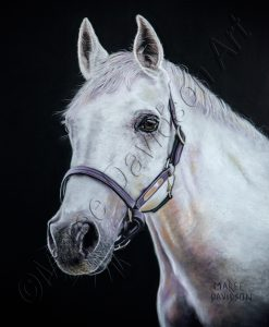 HORSE COLLECTION - MICKEY Maree Davidson Art
