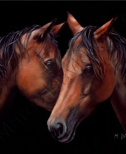 HORSE COLLECTION - MOONLIGHT WHISPERS Maree Davidson Art