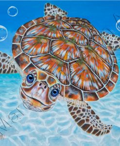 GREEN SEA TURTLE - BUBBLES Maree Davidson Art