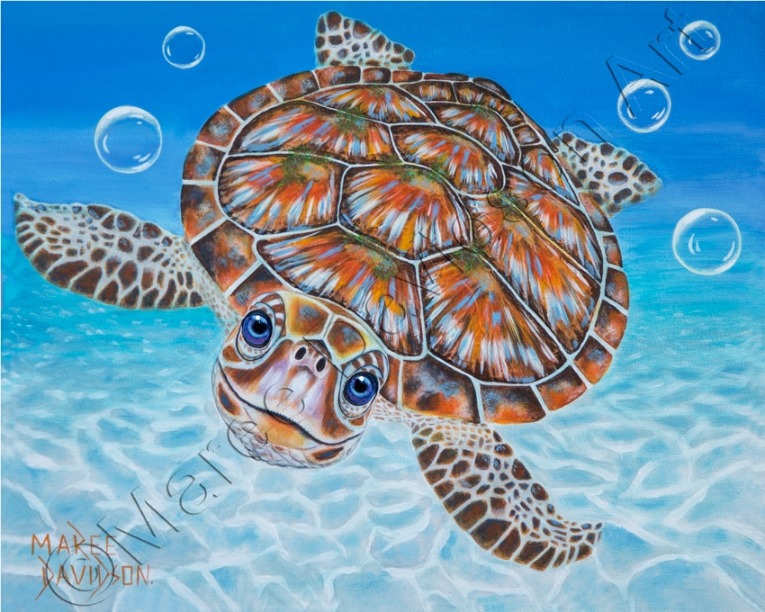 Green Sea Turtle Bubbles