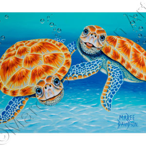 TURTLE PAINTING - HAPPY TOGETHER Maree Davidson Art