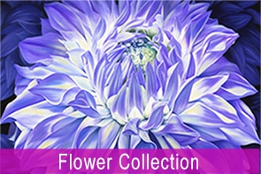 Flower Collection Maree Davidson Art