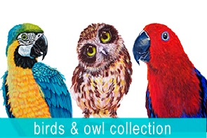 Birds and Owl Collection Maree Davidson Art