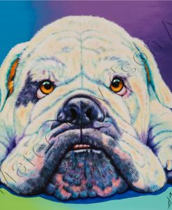DOG COLLECTION - AQUA AUSSIE BULLDOG Maree Davidson Art
