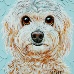 DOG COLLECTION - SHIH TZU DOG Maree Davidson Art