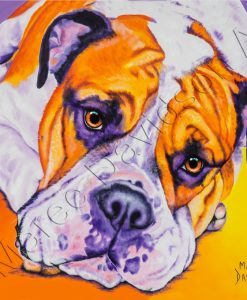 DOG COLLECTION - AUSTRALIAN BULLDOG Maree Davidson Art