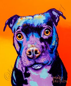 DOG COLLECTION - BABY STAFFY Maree Davidson Art