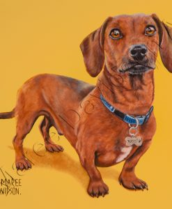 DOG COLLECTION - DACHSHUND BENTLEY Maree Davidson Art