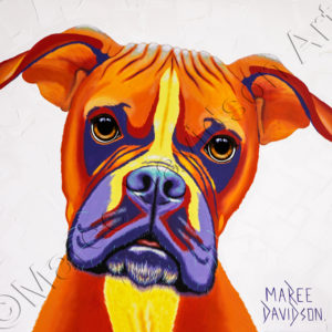 DOG COLLECTION - BOXER Maree Davidson Art