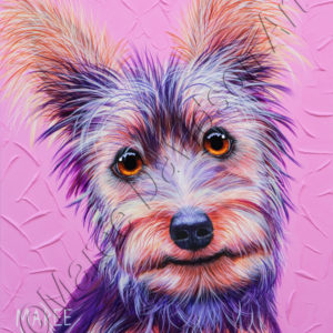 DOG COLLECTION - SILKY TERRIER Maree Davidson Art