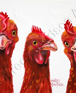 BARNYARD BUDDIES Maree Davidson Art