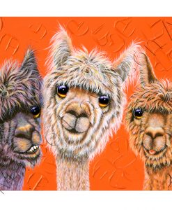 ALPACA PAINTING - HANGING OUT Maree Davidson Art