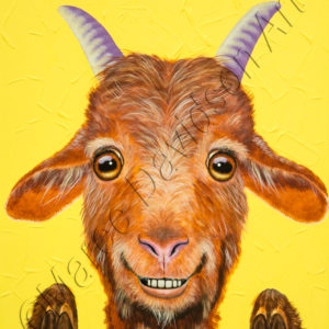 BUCK THE GOAT Maree Davidson Art