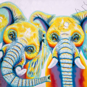 RAINBOW COLLECTION - HAPPY ELEPHANTS Maree Davidson Art