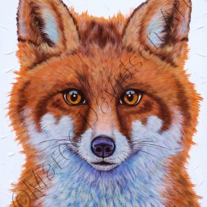 SWIFT THE LITTLE RED FOX Maree Davidson Art