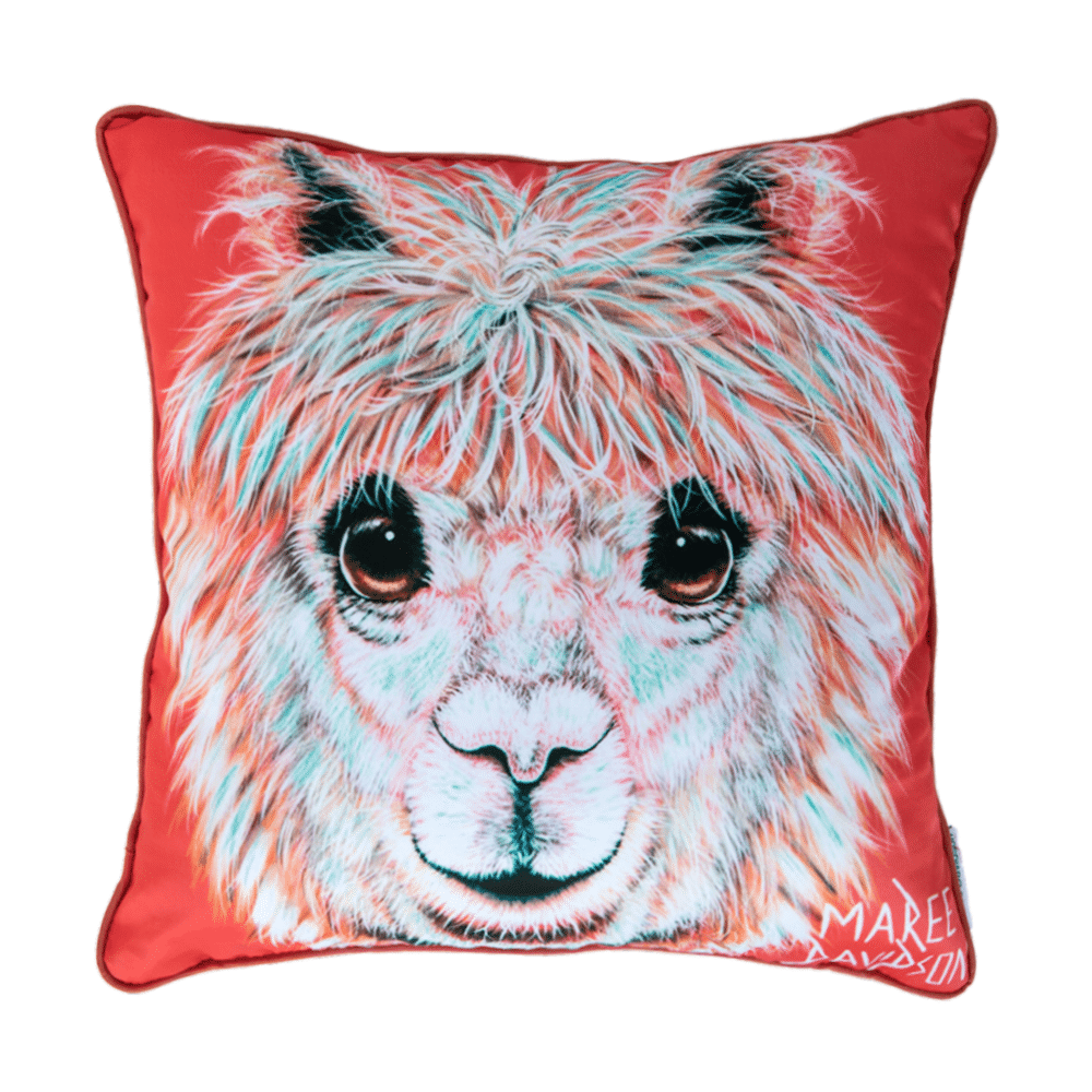 Cushions inspired by chosen artist - Chesterpsandqsorguk