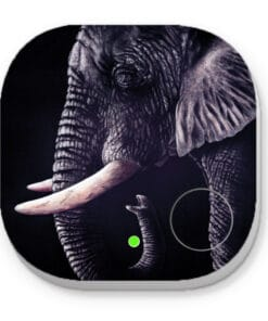 African dream - PHONE AND KEY FINDER