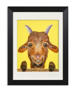 Buck the Goat - Maree Davidson Art