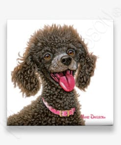 Chocolate Poodle - Ceramic Coaster - Maree Davidson