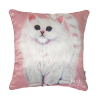 KITTEN - CUSHION COVER - MAREE DAVIDSON ART