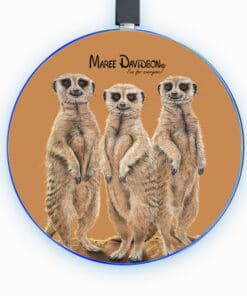 THE THREE MEERKATTEERS