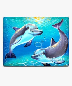 Two Dolphins- Ceramic Magnets - Maree Davidson